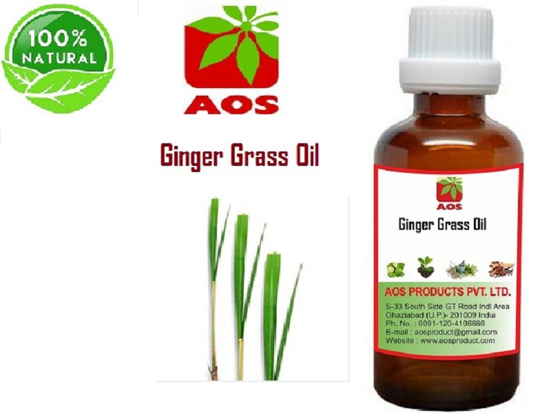 Ginger Grass Oil
