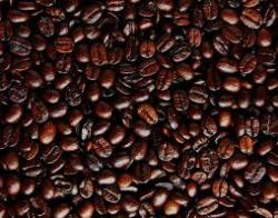 Roasted Coffee Extract
